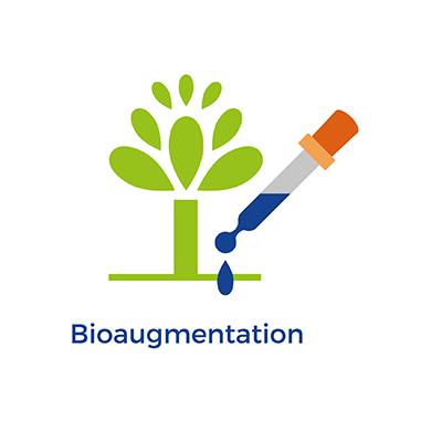 Bioaugmentation