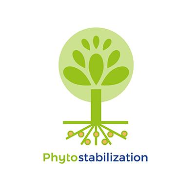 Phytostabilization