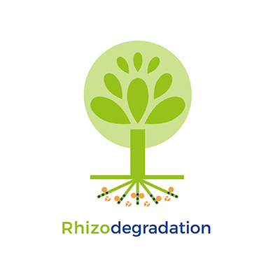 Rhizodegradation
