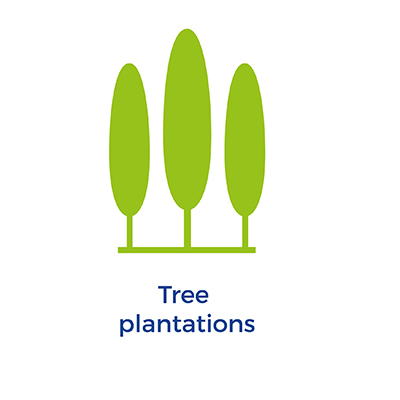 Tree plantations